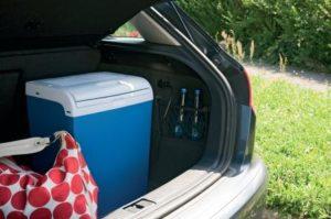 Виды автомобильных холодильников